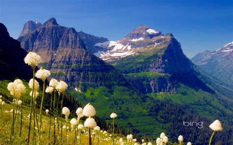 bing wallpapers as desktop background mountain lake bing theme of photography mountains white wildflowers
