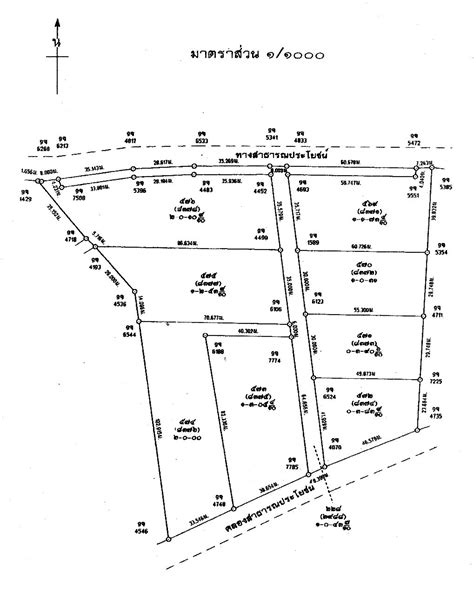 layout plan of land 766 19 rai development land mae phim area 171 sunrise