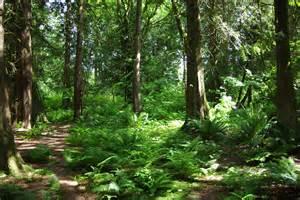 trinity western celebrates blaauw eco forest trinity