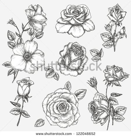 rose bud tattoo pictures vintage black and white search
