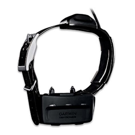 gps tracking collar garmin 174 tt 10 gps tracking collar 310905 electronic collars at sportsman s