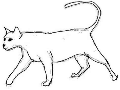 imagenes faciles para dibujar de gatos imagenes de como dibujar un gato facil dibujos de gatos