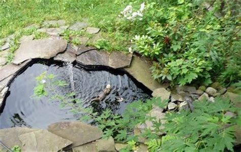 building a small backyard pond diy backyard pond tips bob vila