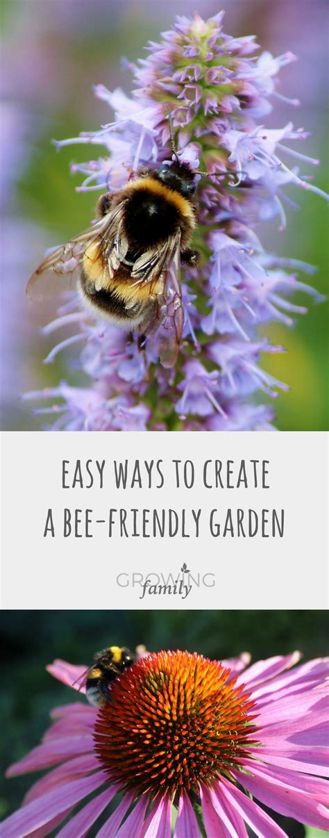 the bee friendly garden easy ways to help the bees and make your garden grow books gardening for nature easy ways to create a bee friendly