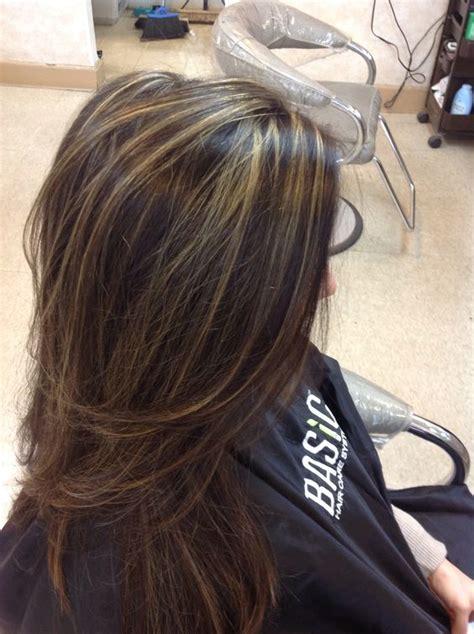 partial highlights for dark brown hair partial highlights by nicole socialbeautytogo social