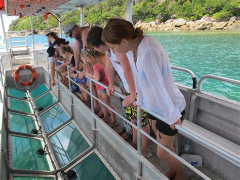 glass bottom boat tours gold coast fitzroy island day trip island day tour