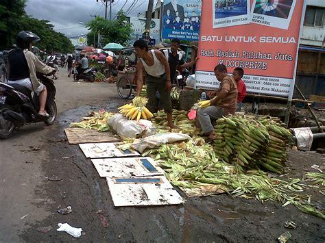 Bibit Jagung Manis Di Makassar jagung muda laris manis sambut tahun 2013 di makassar