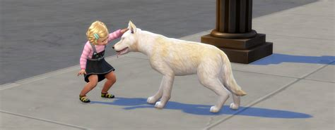 sims 4 cats and dogs cheats cats dogs impression sims