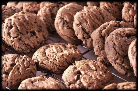 Cookies Di Coffee Bean chocolate chipground coffee bean cookies recipe just a pinch recipes