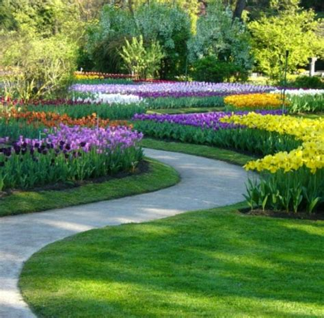 Exceptional Bell Park Gardens #4: Immagine%2011_51.png