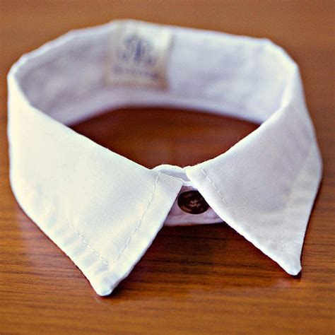 handmade cat shirt collar by all things brighton beautiful