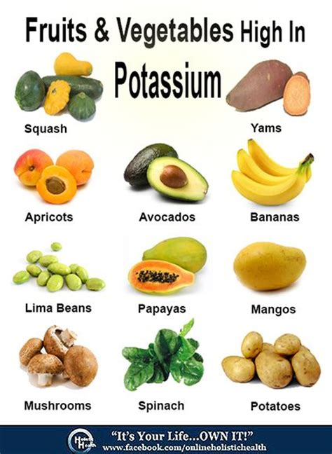 vegetables rich in potassium 1000 images about about minerals on table