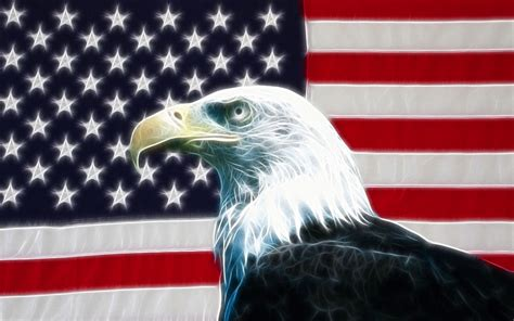 eagle usa flag wallpaper desktop 13072 wallpaper