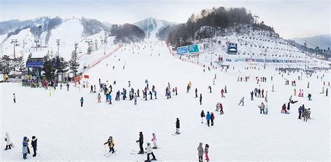 agoda yongpyong ski resort yongpyong resort living nomads travel tips guides