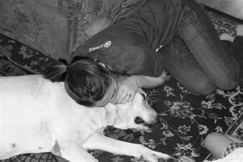 way to euthanize at home why we chose to euthanize our at home huffington post
