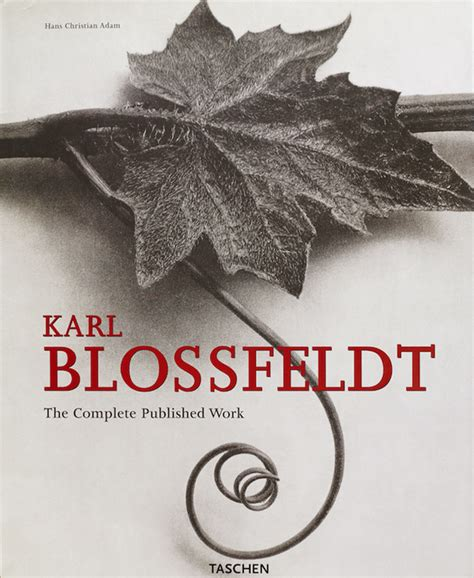 libro blossfeldt the complete published favoritos de mi biblioteca jos 233 b ruiz