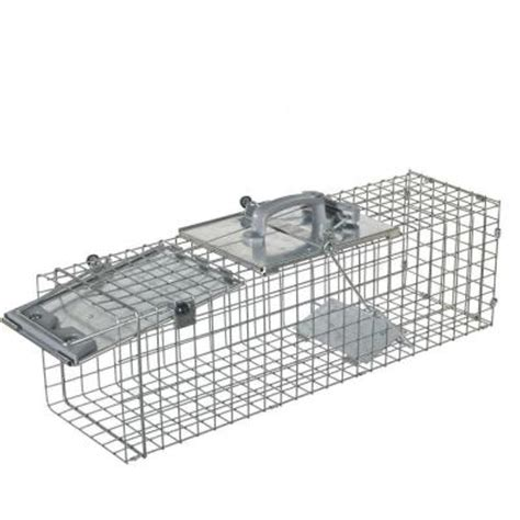 havahart medium easy set live animal cage trap 1084 the