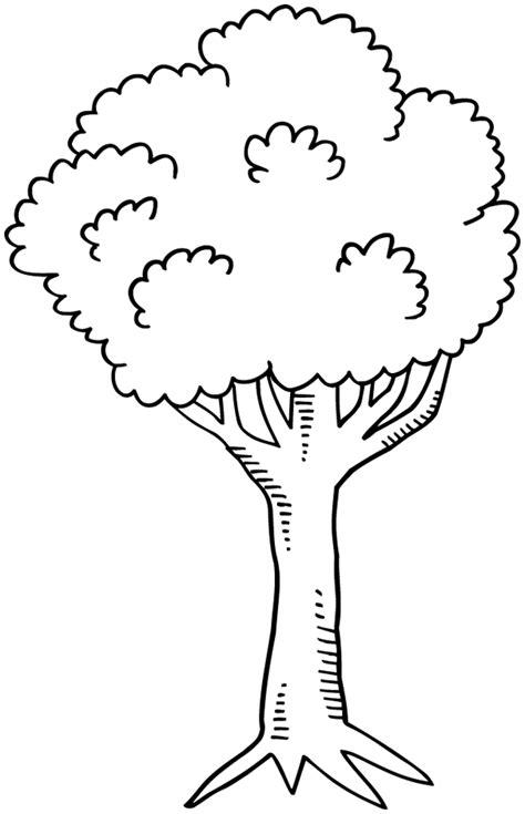 dessin arbre gratuit az coloriage