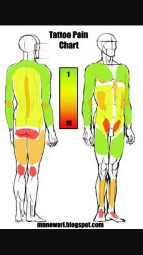 tattoo body chart tattoo pain chart one of the many ive seen tattoos