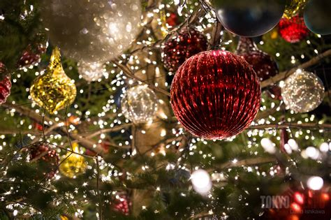 100 christmas decor suppliers south africa