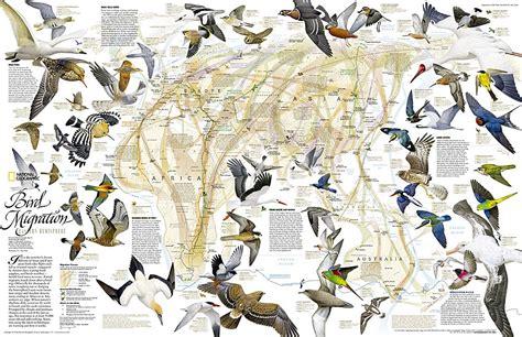 hm20040200 1 lg jpg 1000 215 647 ijm map pinterest