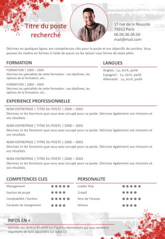 Curriculum Vitae Template Google Docs by Exemple De Cv Dynamique Gratuit 224 T 233 L 233 Charger