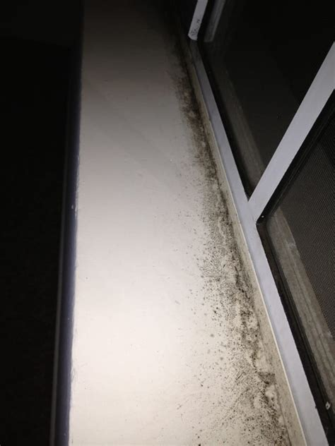 Mould Growing On Windows Designs All Along The Window Sill More Bacteria Mold Growing In The Interior Master Bedroom Windows