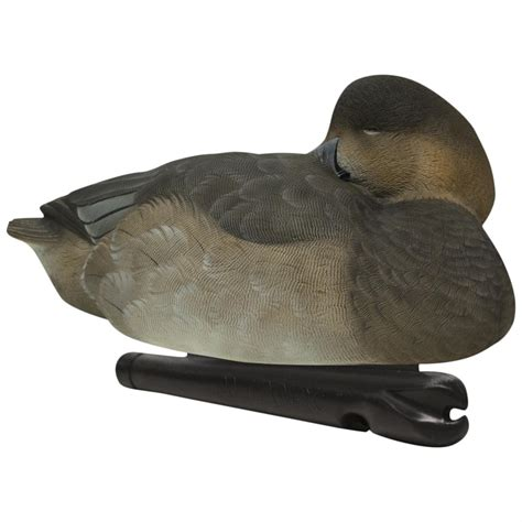 Sleeper Duck Decoys by Avian X Topflight Canvasback Sleeper Floating