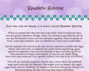 Gallery images and information rainbow bridge poem for cats