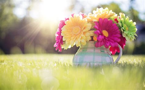 free wallpaper and backgrounds spring backgrounds desktop 183