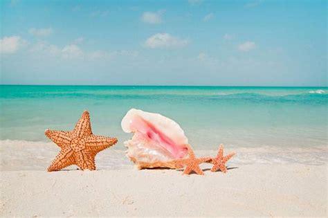 vacanza al mare estate 2012 le mete top per vacanze al mare viaggi news