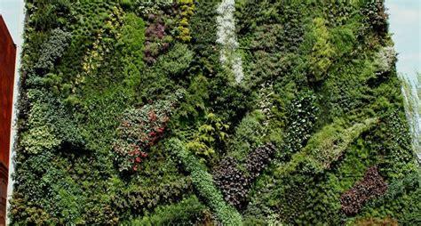 giardini verticali costi realizzare giardini verticali progettazione giardini