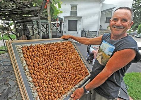 guinness world records largest largest collection of pits joe resendes breaks guinness world records record