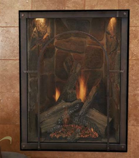 Portrait Fireplace by Forest Portrait Styletraditional Direct Vent Fireplace