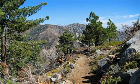table mountain cground wrightwood ca