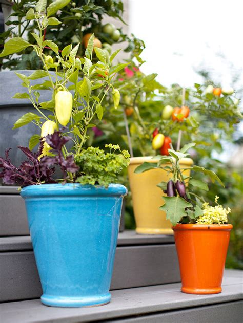 Cottage Garden Fresh Ideas For Growing Vegetables In Container Vegetable Garden Ideas