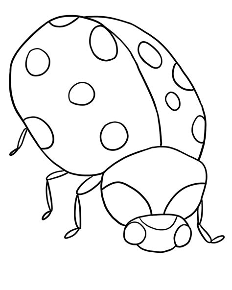 Free Printable Ladybug Coloring Pages For
