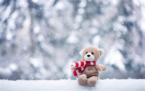 fotos reales invierno winter pic wallpaper high definition high quality