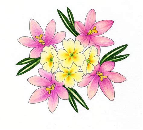 Drawings Of Flowers by Flowers For Flower Flowers Drawing