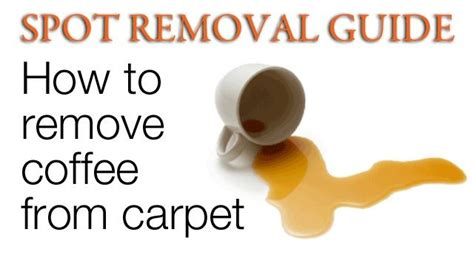 how to get coffee stains out of carpet for the home pinterest