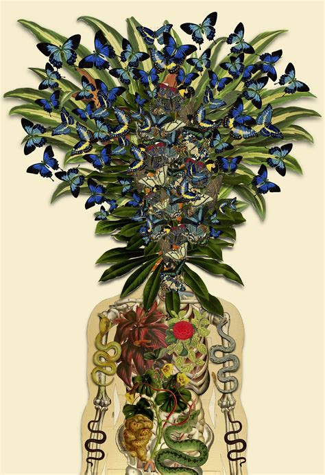 How To Make Clay Vases By Hand New Anatomical Collages By Travis Bedel Colossal