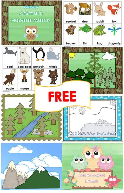 printable animal homes animal and habitat match free printables animal habitats