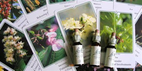 fiori di bach torino i fiori di bach e le paure alla farmacia dei fiori di