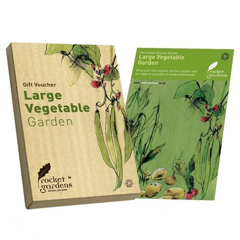 Vegetable Garden Gifts Large Vegetable Garden Gift Voucher Rocket Gardens