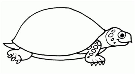 printable turtle templates early play templates turtle templates