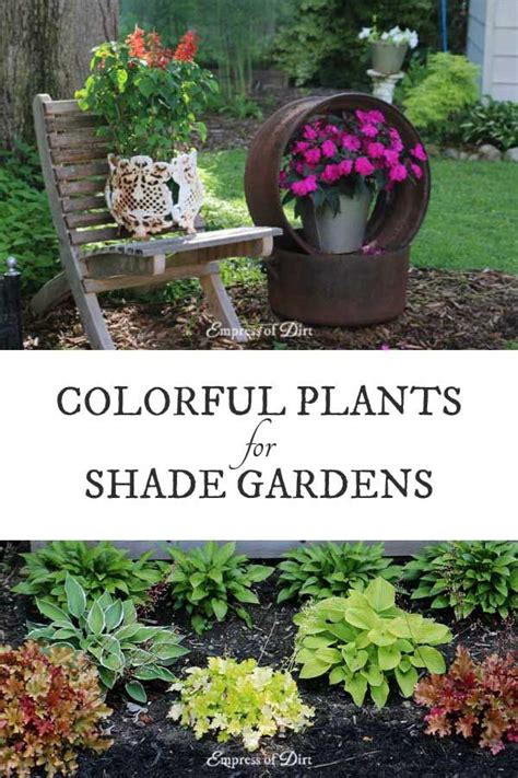 How Many Plants Should I Plant In My Garden What Flowers Should I Plant In My Garden