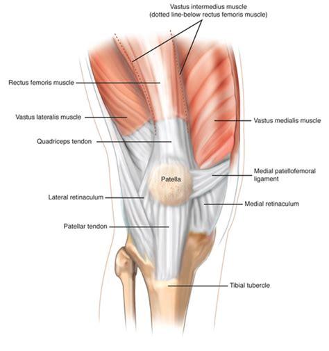 condilo femorale interno medial patello femoral ligament reconstruction yeovil