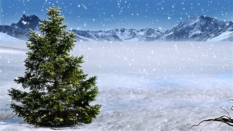 winter backgrounds winter background with snow