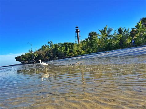 Florida Keys by Trolley Tours Adventures In Paradise 239 472 8443