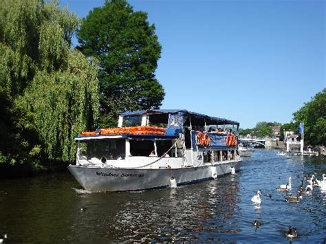 river thames boat trips maidenhead by the river thames in windsor uk picture of windsor